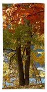 Fall In Kaloya Park 4 Beach Towel
