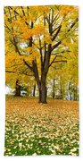 Fall In Kaloya Park 7 Beach Towel