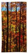 Fall In Ontario Canada Beach Towel