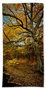 Fall In Pennsylvania Beach Towel