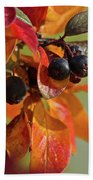 Fall Leaves And Berries Beach Towel
