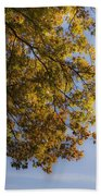 Fall Magic Beach Towel