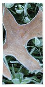 Fall On Ice Beach Towel