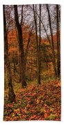Fall On The Ice Age Trail Beach Towel