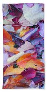 Fall Purples  Beach Towel
