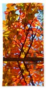 Fall Reflextion Beach Towel