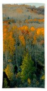 Fall Ridge Beach Towel