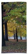 Fall Series 14 Beach Towel