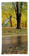Fall Series 15 Beach Towel