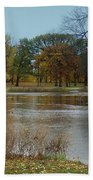 Fall Series 9 Beach Towel