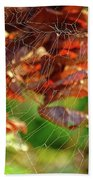 Fall Spiderweb Beach Towel