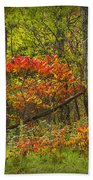 Fall Sumac Trees With Red Leaves In A Michigan Forest During Autumn Beach Towel