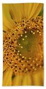Fall Sunflower Avila, Ca Beach Towel
