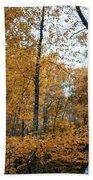 Fall Tees At  Yankee Horse Overlook   Beach Towel