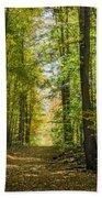 Fall Trail Beach Towel