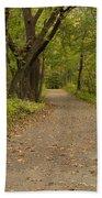 Fall Trail Scene 45 A Beach Towel