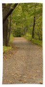 Fall Trail Scene 45 B Beach Sheet