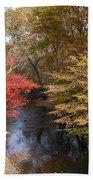 Fall Transition Beach Sheet