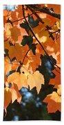 Fall Tree Art Prints Orange Autumn Leaves Baslee Troutman Beach Towel