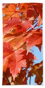 Fall Tree Leaves Art Prints Blue Sky Autumn Baslee Troutman Beach Towel
