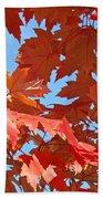 Fall Tree Leaves Red Orange Autumn Leaves Blue Sky Beach Sheet