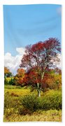 Fall Trees In Country Field Beach Towel