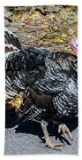 Fall Turkey Beach Towel