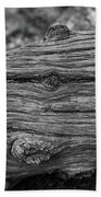 Fallen Black And White Trees And Lines In Nature Beach Towel