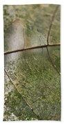 fallen Leaf Beach Sheet