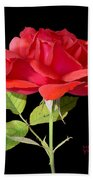 Fallen Red Rose Cutout Beach Towel