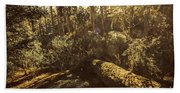 Fallen Tree In Foliage Beach Towel