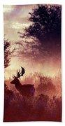 Fallow Deer In Fairytale World Beach Towel