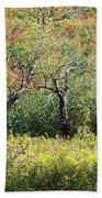 Fallow Meadow Beach Towel