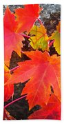 Falltime ...  Beach Towel