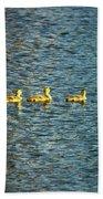 Family Beach Towel by Scott Pellegrin