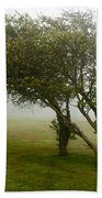 Family Tree Beach Towel
