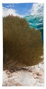 Fan-tastic Sea Web Beach Towel