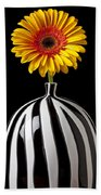 Fancy Daisy In Stripped Vase  Beach Towel