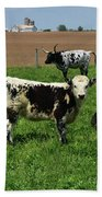 Fantastic Farm On A Spring Day With Cows Beach Towel