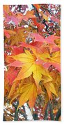 Fantasy Of Fall Beach Towel