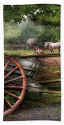 Farm - Horse - Grey Mare Beach Sheet