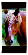 Horse Portrait Beach Towel