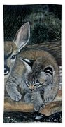 Fawn And Cat Beach Towel