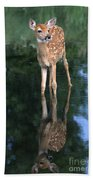 Fawn Reflection Beach Towel