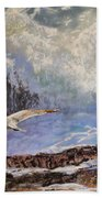 Feather And Foam Beach Towel