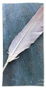 Feather Of A Dove Beach Towel