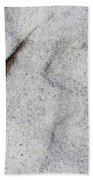 Feather, Shell And Sand Beach Towel