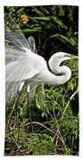 Beautiful Feathers And Foliage Beach Towel