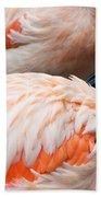 Feathers Of Flamingo Beach Towel