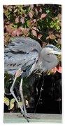 Feathers Ruffled Beach Towel